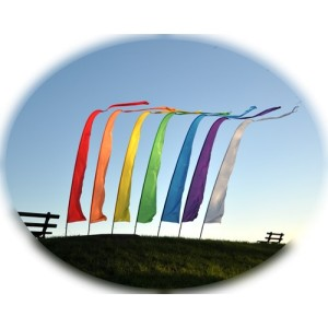 Festival Banner 3.75m Flag Kit with Pole & Ground Stake