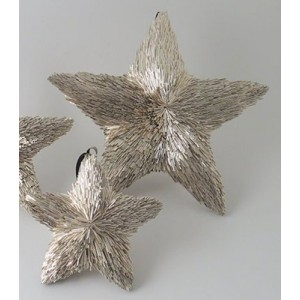 Hanging Champagne Star - 19cm