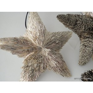 Hanging Champagne Star - 26cm